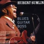 Hubert Sumlin Blues Guitar Boss